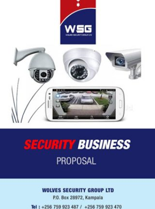 WSG-Security-Business